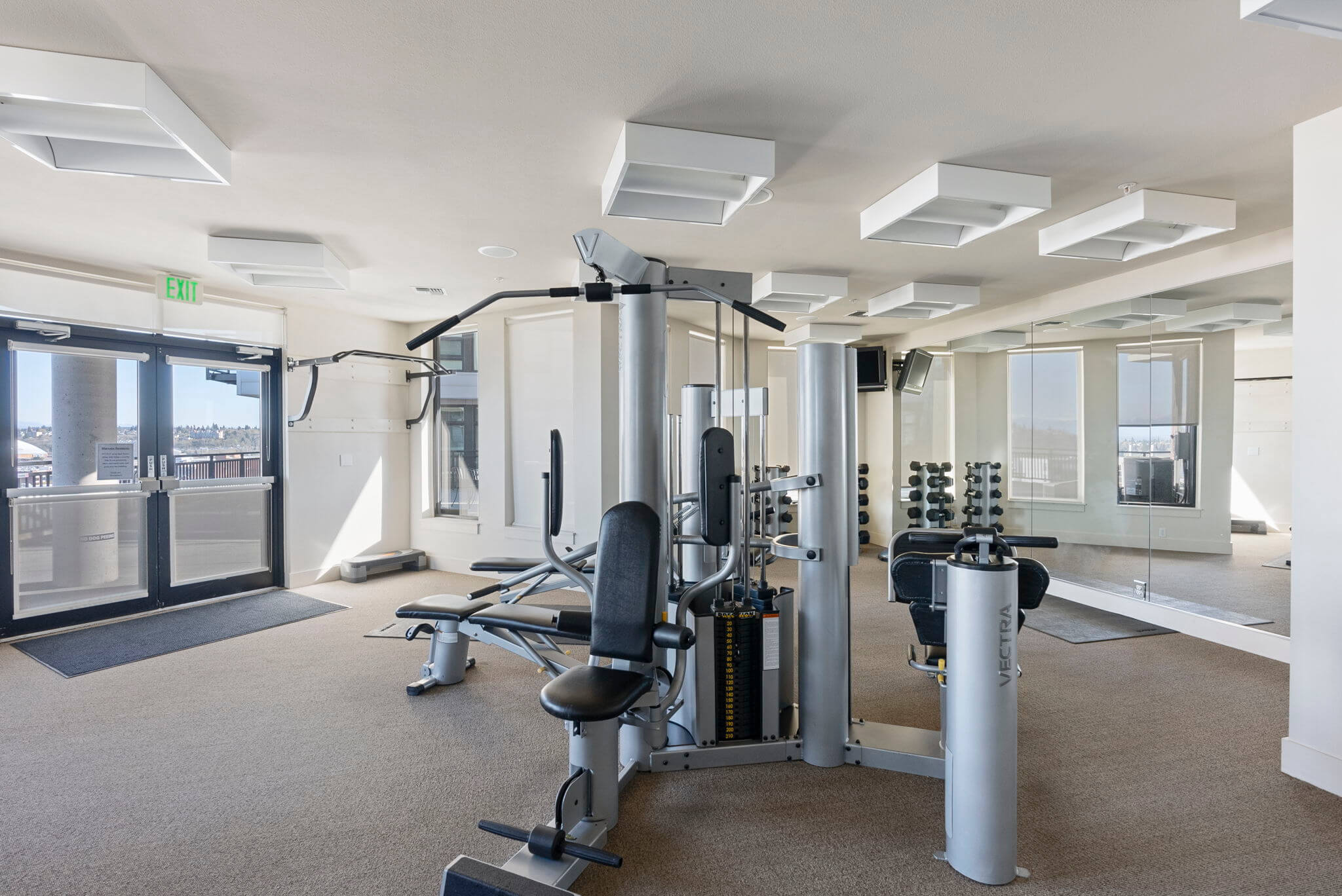 Weight machines and free weights
