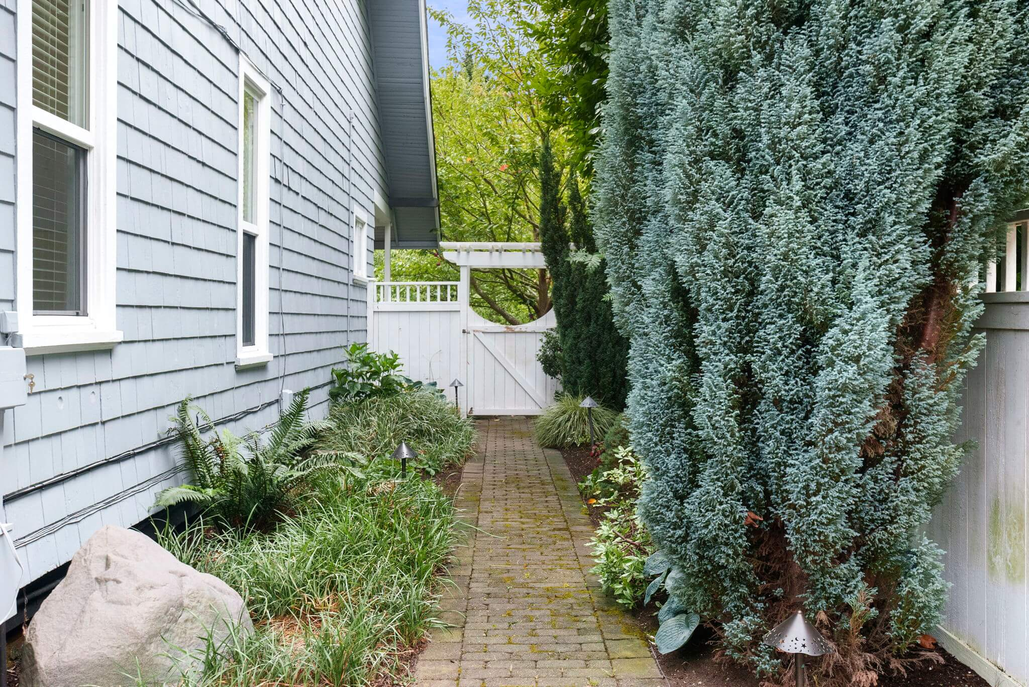Side yard with mature plantings